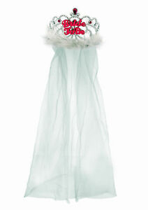 Bride To Be Tiara and Veil Hen Night Party Pink
