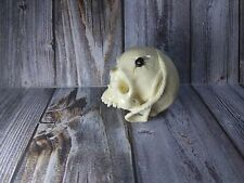 Skull Skeleton Head with Rope From Cue Pool Ball Billiard Ball Hand Carving