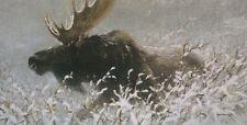 "Winter Run Bull Moose - Robert Bateman LTd Paper Print size 16""1/4"" x 32""1/2"
