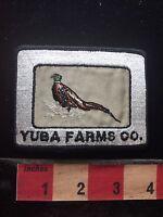 Vtg YUBA FARMS CO. Patch - Advertising / Uniform  Maybe Bakersfield CA 76X1