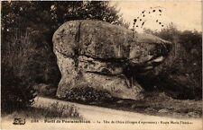 CPA Forét de Fontainbleau - La Téte de Chien (166739)