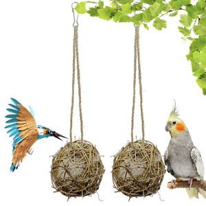 Hummingbird Nesting House Birds Hand-woven Rattan Globe Bird Parrot with Cot'BI