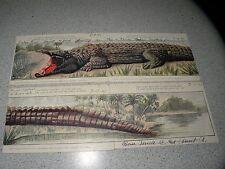 VINTAGE POSTCARD postcards HULD'S PUZZLE SERIES NO 1 ALLIGATOR COMPLETE