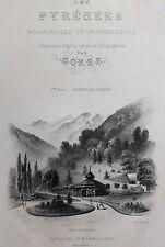 1850 1860 Gorse Les Pyrénées Monumentales et Pittoresques Luchon Pau Cauterets