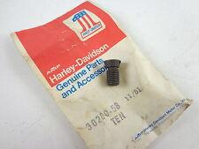 Harley Davidson Pole Shoe Screw 30280-58