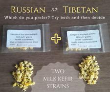 2 x Dehydrated Dry Milk Kefir Grains: Russian + Tibetan Strains ~ POST WORLDWIDE