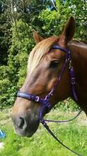 Perfeq, Co-Ordinated, Purple Hackamore Bridle and Irons with Aztec Overlay