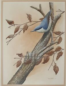 Mark Chester (1960-) Acrylic (not oil) painting of bird on tree