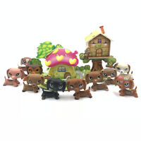 Lps dogs littlest pet shop toys + puzzle bedroom DACHSHUND dog with accessories