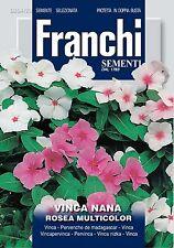 40 Semi/Seeds VINCA Nana Rosea Multicolor