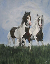 Old Mill Farms Stallions ~ Gypsy Vanner ~ Cob ~ Drum Horse ~ Print