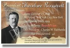 Presidential Series - Theodore Roosevelt - New Famous U.S. President Poster