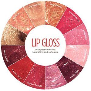Burt's Bees Lip Gloss 100% Natural - Choose Your Shade New Sealed