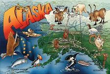 Alaska State Map, Anchorage, Juneau, Fairbanks, Nome, Puffin, Eagle etc Postcard