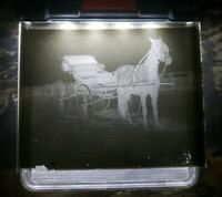 Antique Glass Plate Negative Photo Photograph Horse Drawn Carriage Buggy Wagon