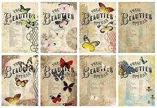 Colourful Butterflies  ~ Card Making Toppers / Scrapbooking / Crafting