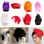 10cm~100cm Hackle Feather Fringe Wedding Craft Sewing Trimming Costume Millinery