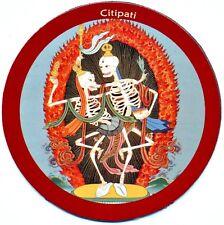 Magnet CITIPATI ~ Kühlschrankmagnet ~ Pin (984)