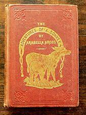 Victorian Childrens Book Adventures Donkey Argus Illustrated Old Antique Darton