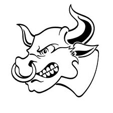 ANGRY BULL STICKER Car Bumper Sticker  - 10 cm x 10 cm