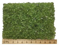 2 lb Wholesale Tiny Peridot Olivine Quartz Crystal Stone Green Gravel Chip 3-5mm