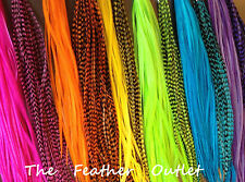 Lot 40 Grizzly Solid Feathers Hair Extensions  Colors Bright Real NEON RAINBOW