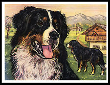 Bernese Mountain Dog Great Vintage Style Dog Print Poster
