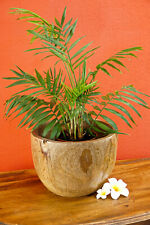 Wood Planter Teak Solid Wood Flowerpot Natural Plants Pot Plant Bowl Round