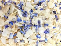 Pale Blue Delphinium Ivory Dried Biodegradable Wedding Confetti. Real Petals