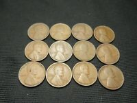 "12 different 1909 to 1920 ""P"" Lincoln wheat cents US coins all G-VF free ship"
