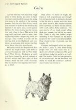 "The Cairn Terrier - Vintage Dog Art Print - Matted ""G"""