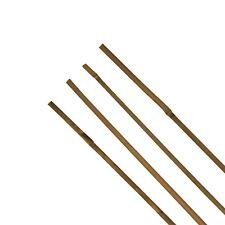 Tonkinstab Bambusstab 120 cm Ø ca.1-1,2 cm Rankhilfe Pflanzstab Pflanzstütze