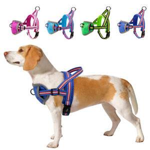 No Pull Soft Padded Dog Chest Harnesses Mesh Front Leading Puppy Large Dog Vest