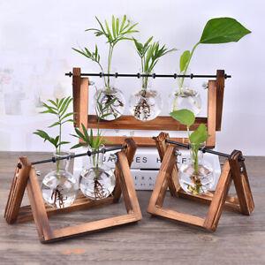 Bonsai Planter Wooden Frame Flower Pot Glass Vase Hydroponic Plant Vases