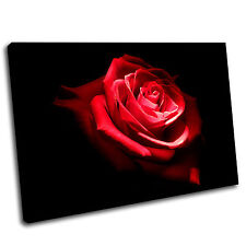 Red Rose Canvas Print Art Picture 32 Gallery Grade
