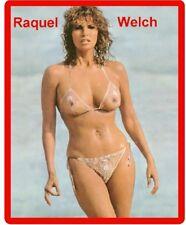 Raquel Welch 1970's Bikini Beach Scene Refrigerator / Tool Box  Magnet Man Cave