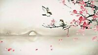 cherry blossom tree with birds Chinese art Canvas 20x30 Inches Wall Art