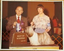 Lhasa Apso 1976 Champion Dog Show 8 x 10 Photograph / Photo