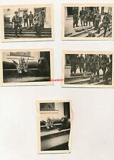 5 x Foto, Zahnarzt Einsatz Ostfront, Treibjagd in Marienburg 1944
