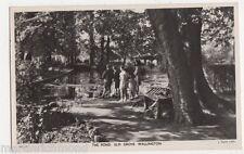 Wallington, The Pond, Elm Grove, Surrey Tuck WL 2 RP Postcard, B448