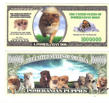 Dollar Pomerian Dog One Million Doggie Bones