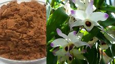 Dendrobium nobile Extrakt 100:1 - 100% Pure Dendrobium Extract + Extra Zugaben