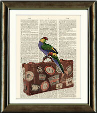 Antique Book page Art Print - Parrot on Suitcase Vintage Dictionary Wall Art