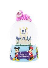 DISNEY PARKS CINDERELLA CASTLE Greetings Disney World A Small World Cheshire Cat