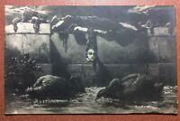 Tsarist Russia Razswet postcard 1907 KOTARBINSKY Witch SLEEP. Snake Python. Swan