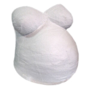 Belly Casting Kit - All you need to cast your pregnant belly