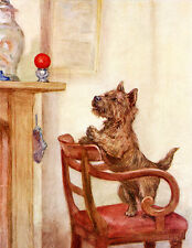 CAIRN TERRIER CHARMING DOG GREETINGS NOTE CARD DOG WANTS TO PLAY WITH BALL