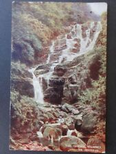 Ireland Co. Kerry KILLARNEY - TORC CASCADE VIA HOLYHEAD c1907 By L&NWR