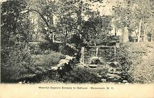 A View of the Waterfall Opposite the Entrance to Oakhurst, Mamaroneck NY 1907