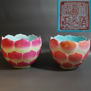Antique Chinese Porcelain Lotus Bowls or Flower Pot Jardiniere, Marked Daoguang